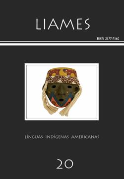 Visualizar v. 20 (2020): Publicação Contínua