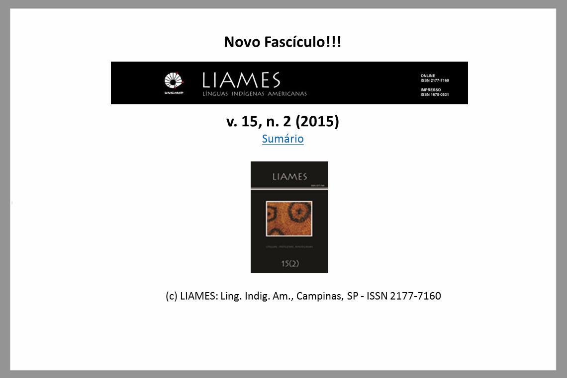 Novo fascículo da revista LIAMES está disponível no Portal!